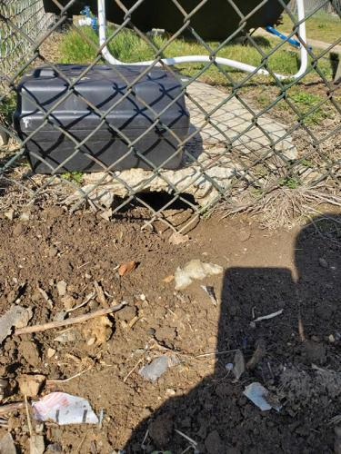 Xterminator Services job rat hole and nesting under a small concrete pad