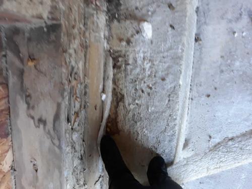 Xterminator Services job Termite damage active